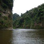 Der Regenwald fasst auch an den Wänden der Schluchten Fuß.