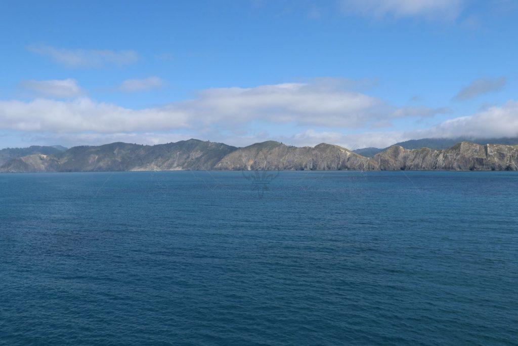 """Mit der Fähre """"Kaitaki"""" unterwegs zur Südinsel."""