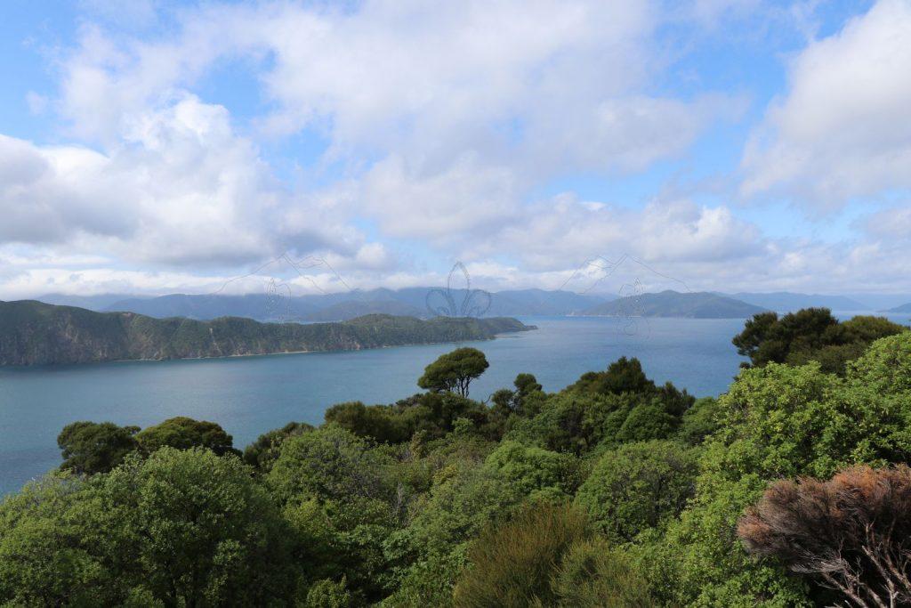 Vogelschutzgebiet Motuara